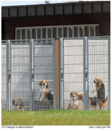 Tierversuchslabor Mienenbüttel und die Grenzen kommunaler Kontrolle