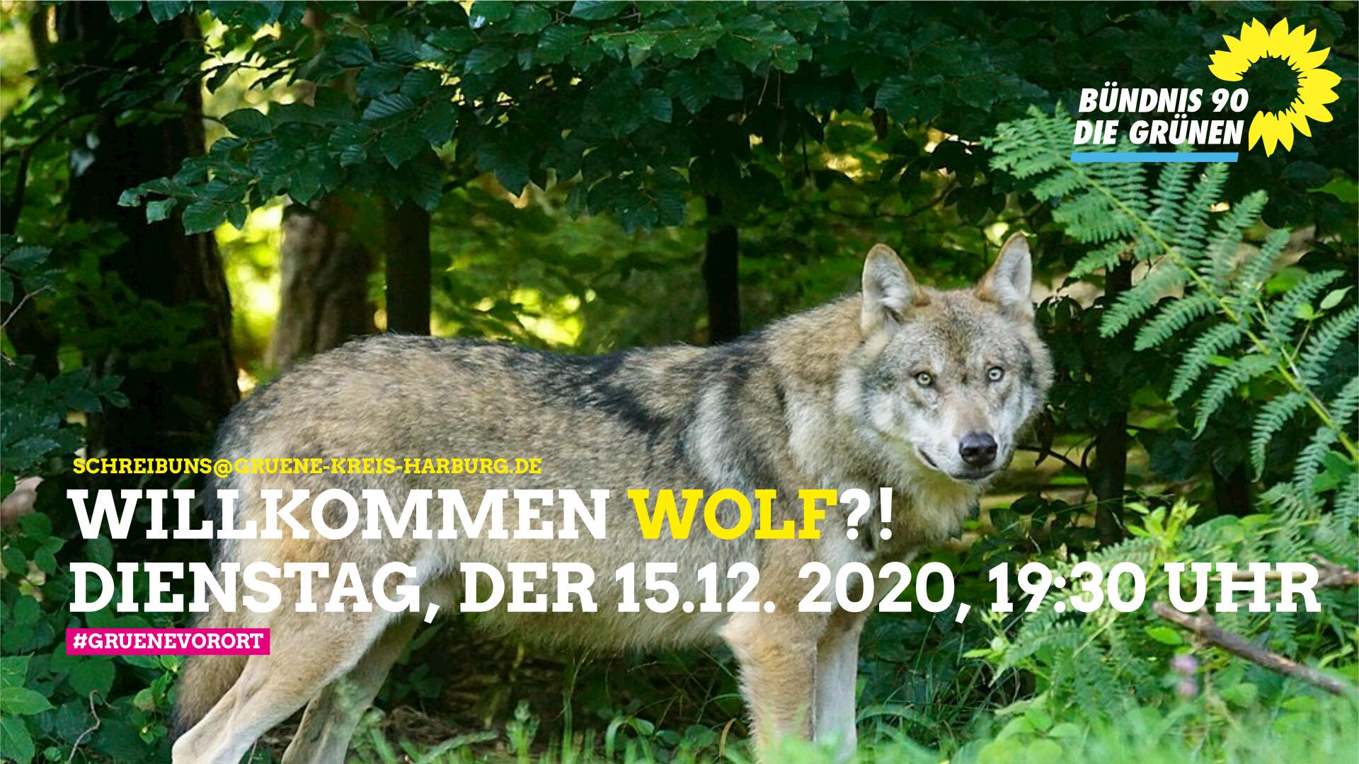 Willkommen Wolf?!