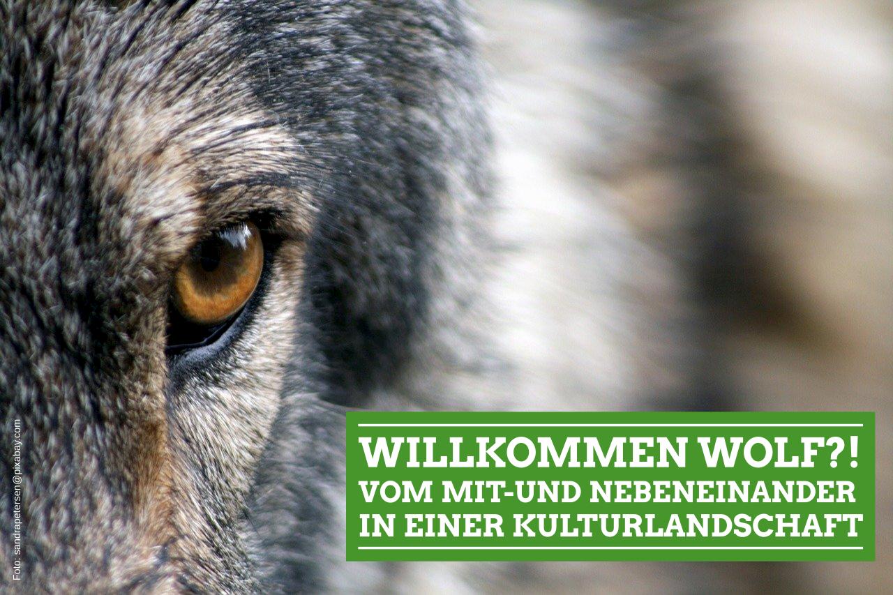 Willkommen Wolf?! Vom Mit- und Gegeneinander in einer Kulturlandschaft