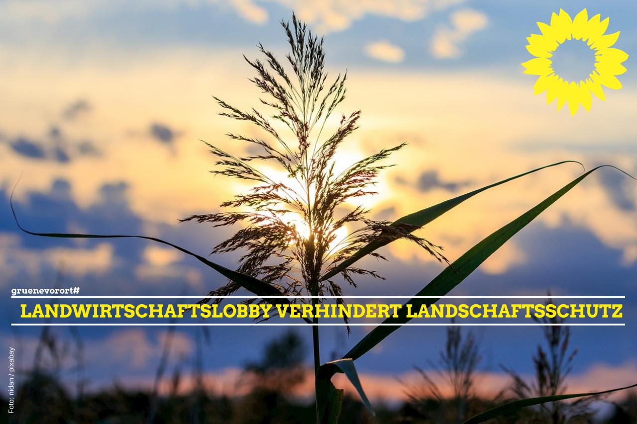 Landwirtschaftslobby verhindert Landschaftsschutz