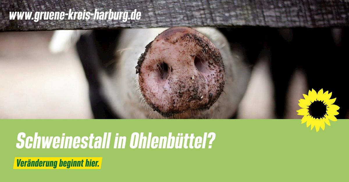Schweinestall in Ohlenbüttel?