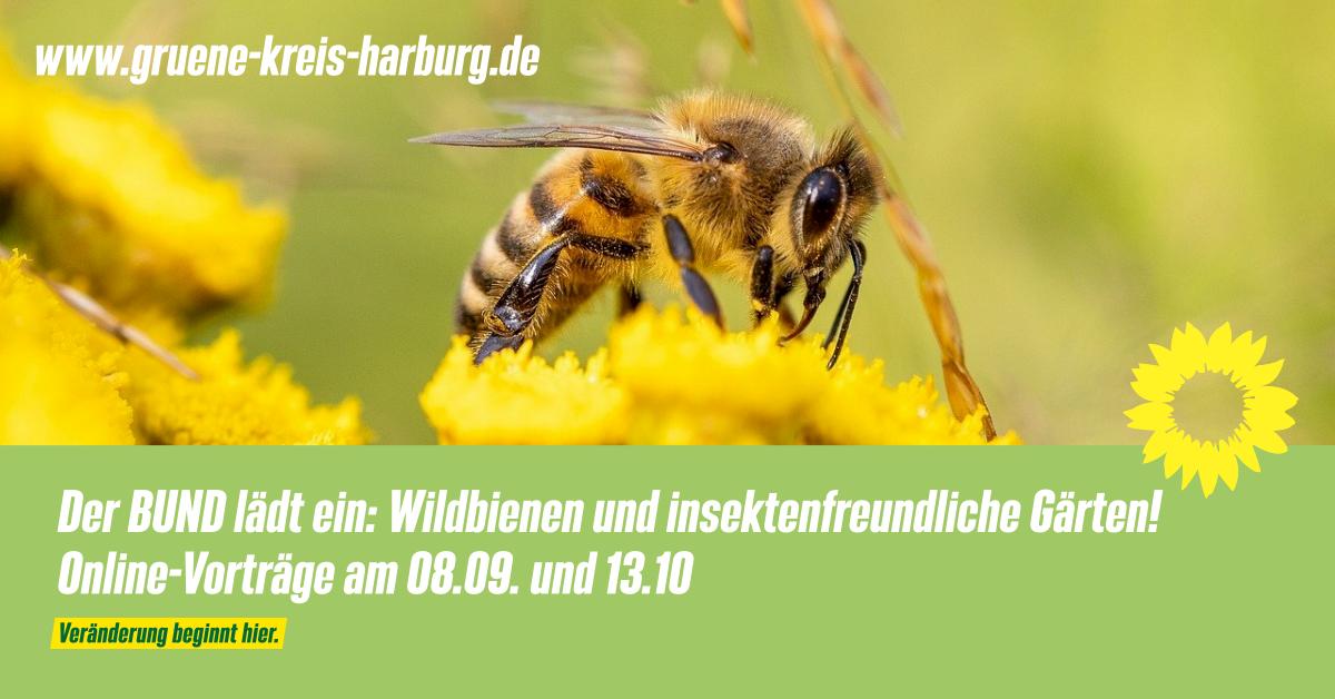 Der BUND lädt ein! Vorträge zu Wildbienen und insektenfreundliche Gärten!